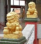 Lions 2 (31776192270).jpg