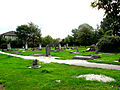 Liquefaction in Barbadoes St Cemetery.jpg