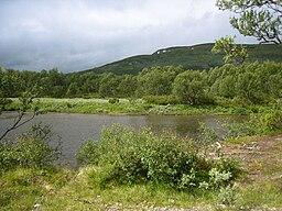 Ljungans oberst løb mellem Lyngris og Ljungdalen