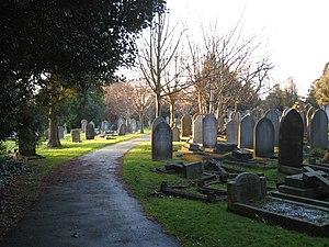 Locksbrook Cemetery - West side of cemetery