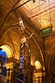 London - Cromwell Road - Natural History Museum VIII.jpg