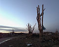 Looking like a war zone, this area in Oklahoma City, Oklahoma, was devastated by an F-5 Tornado with winds up to 230 miles per hour DF-SD-00-03228.jpg