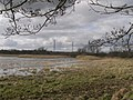 Lower Test nature reserve - geograph.org.uk - 344639.jpg