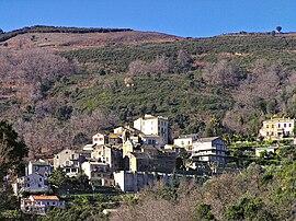 Lucciana-village.jpg