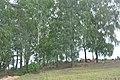 Lucišku kapi, Mākoņkalna pagasts, Rēzeknes novads, Latvia - panoramio.jpg