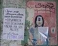 México Feminicida - Irapuato, Gto.jpg