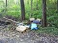 Müll im Wald.jpg