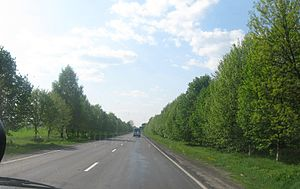 Highway M19 (Ukraine) - Image: M19 Voluineje