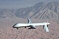MQ-1 Predator unmanned aircraft.jpg