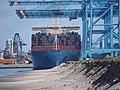 Magleby Maersk (ship, 2014) IMO 9619957 Port of Rotterdam pic2.JPG