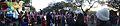 Mardi Gras 2014 Tiger Band.jpg
