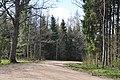 Meža ceļš, Ogresgala pagasts, Ogres novads, Latvia - panoramio (10).jpg