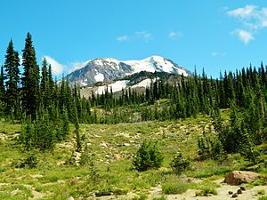 Mount Adams (Washington) - Meadows at Mount Adams Wilderness