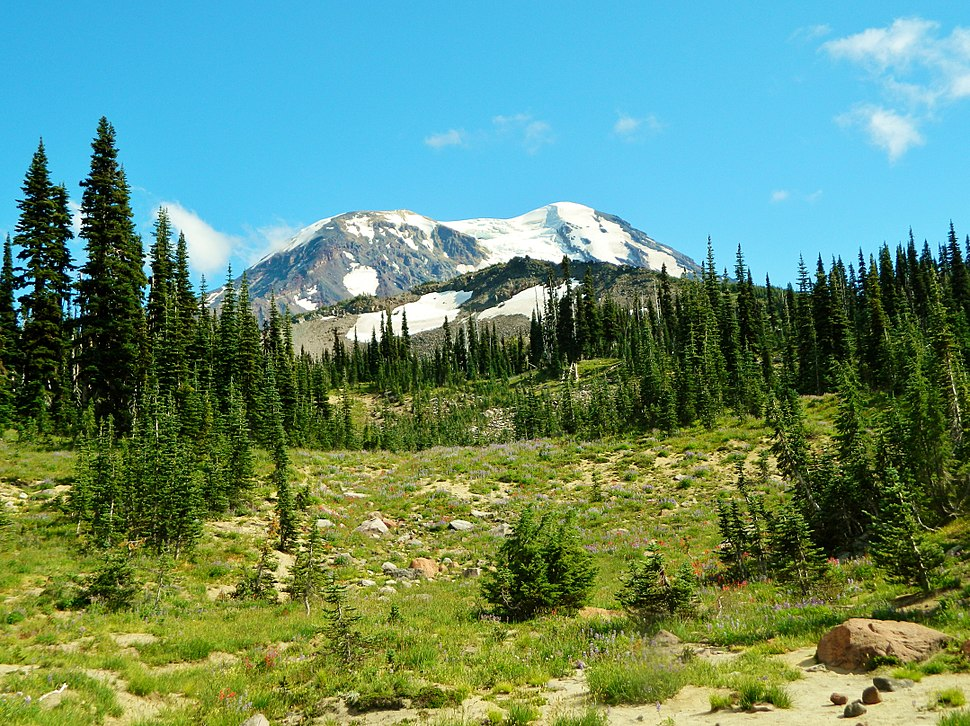 Meadows at Mount Adams Wilderness 03