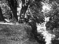 Men, river, reading, stream, shore, water surface Fortepan 4475.jpg