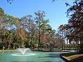 Mercer Arboretum, 2012, Storey Lake fountain.JPG