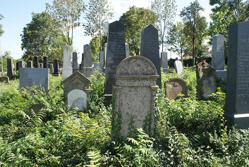 File:Miroslav cemetery 14.JPG