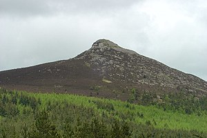 Bennachie - Mither Tap from the south