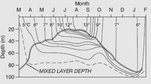 Mixed layer - Depth of Mixed Layer versus the month of the year, along with relationship to temperature