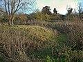 Moat in Fulbourn Fen - geograph.org.uk - 1046542.jpg
