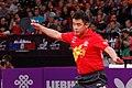 Mondial Ping - Men's Singles - Final - Zhang Jike vs Wang Hao - 31.jpg