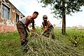 Mongolian Armed Forces Pvt. Baljinyam Batbeleg, left, and Pvt. Uuganbaatar Dashdagam, both with the 338th Construction Unit, bundle brush that was removed from the roof a school during Khaan Quest 2013 130722-M-MG222-004.jpg