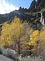 Monroe Canyon in the Fall dyeclan.com - panoramio.jpg