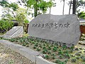 Monument of Schistosoma japonicum disease end.JPG