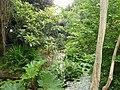 Morrab GardensJPG.jpg