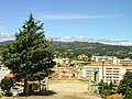 Morro de Alcacima - Tarouca - Portugal (2719540437).jpg