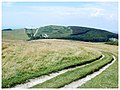 Mottistone Down - geograph.org.uk - 24751.jpg
