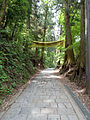 Mount Takao - Trail 1 (9406583901).jpg