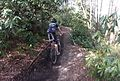 Mountain biking (Brevard NC).jpg