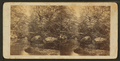 Mountain brook, by Hinds, A. L., fl. 1870-1879 2.png