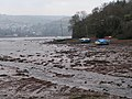 Mud flats on the river Teign - geograph.org.uk - 1105481.jpg