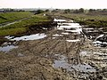 Muddy Track near to Pollard Clough - geograph.org.uk - 766507.jpg