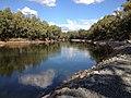 Murrumbidgee River at Wagga Wagga.jpeg