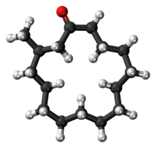 Ball-and-stick model of the muscone molecule