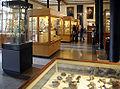 Museum für Naturkunde Belin Mineralienabteilung.jpg