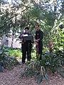 Musica nel Parco - Anno internazionale della Biodiversità.jpg