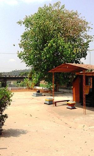 Mananthavady - Image: Muthappan Temple Thayalangadi