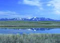NRCSMT01069 - Montana (4985)(NRCS Photo Gallery).tif