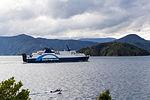 NZ060415 Queen Charlotte Sound 01.jpg