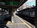Nankai Shin-Imamiya Station Platform 01.jpg