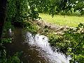 Naturdenkmal Pulvermühlbach 05.JPG