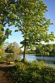 Naturschutzgebiet Mittleres Innerstetal mit Kanstein - Derneburg - Mariensee (13).JPG