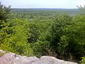Nehantic Trail - View from Mount Misery.jpg