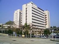 Nethersole TaiPoNewHospital.jpg