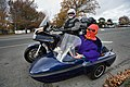 New Zealand - Sidecar - 9705.jpg