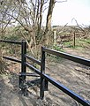 New stile on the edge of Greatpark Wood - geograph.org.uk - 1227979.jpg